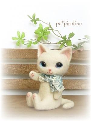 テディ 猫  白猫