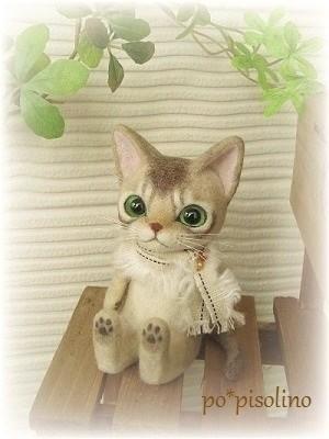 テディ猫 シンガプーラ(リクエスト)