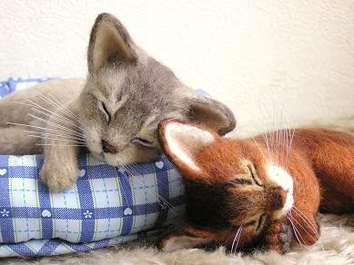 羊毛フェルト猫 アビシニアン