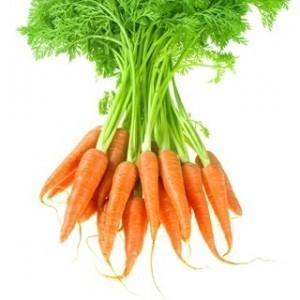 carota per proprietà dimagranti