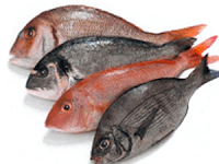 Il pesce è nutriente e fa bene