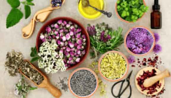 Dieta dimagrante con erbe piante e fiori