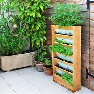 Carré potager vertical de balcon pour plantation bio