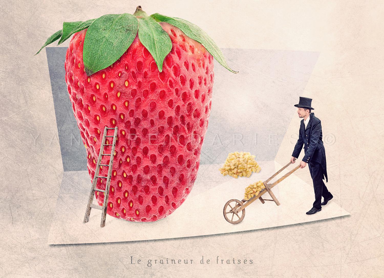 Le graineur de fraises © Yann Pendariès