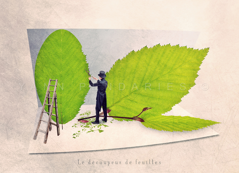 Le découpeur de feuilles © Yann Pendariès