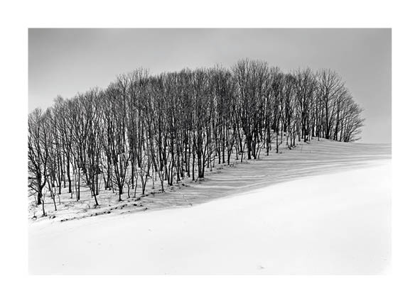 Paysage © Bernard Coste