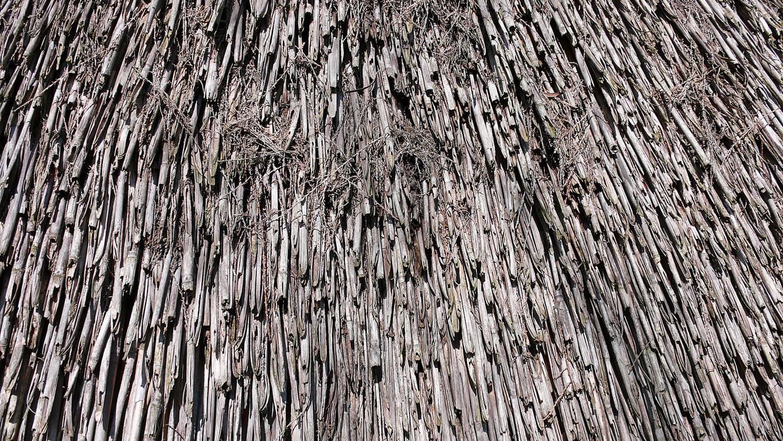 """Caorle - Laguna, un casone (particolare delle """"grisiole"""" del tetto)"""