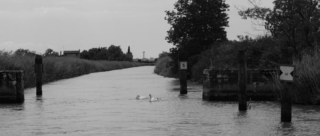 Canale Palangon, porte vinciane