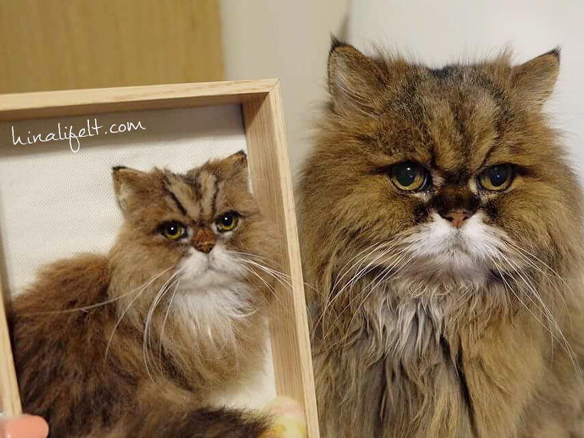 羊毛フェルト猫 チンチラゴールド ペルシャ猫 persian