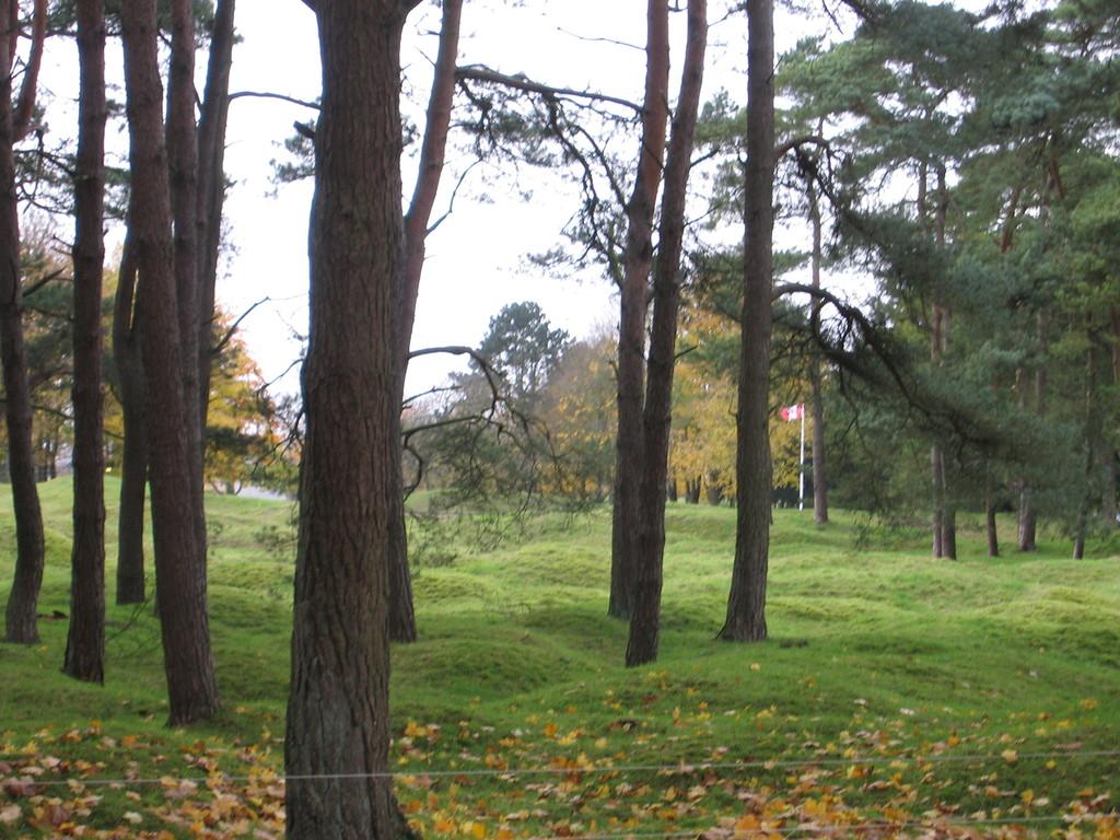Vimy park