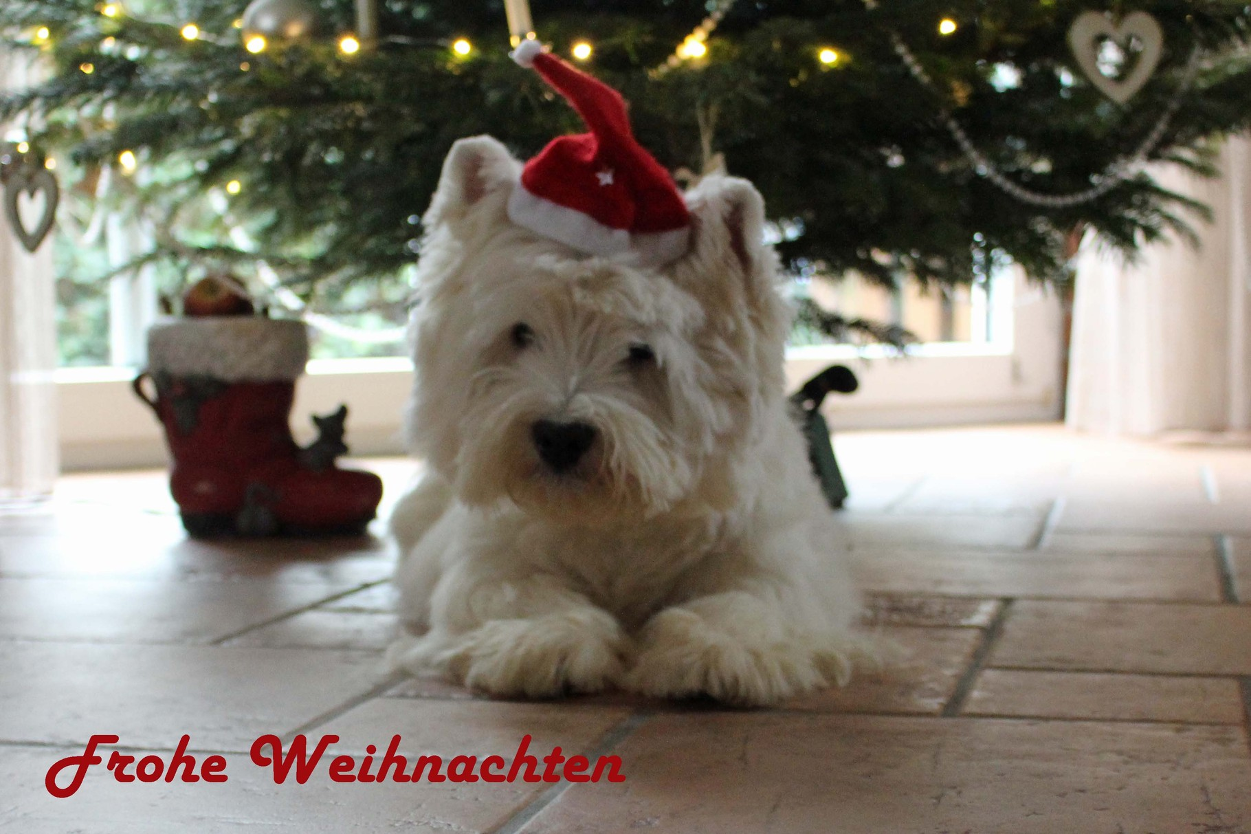 Quickley Weihnachten 2015