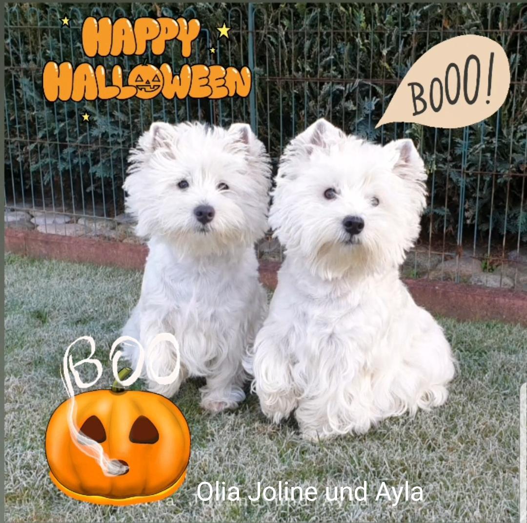 Joline und Ayla 10/2019