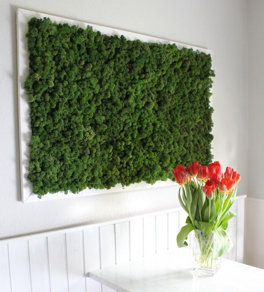 Moosbild pflanzenbild green wall wandgarten wandgr n ebay for Wandgarten wohnzimmer