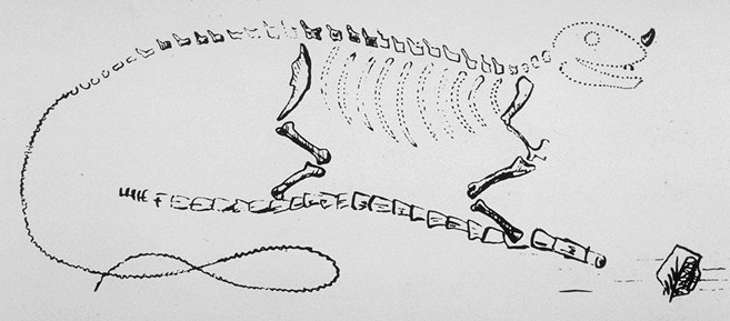 G. Mandel, reconstitution d'un dinosaure, 1825 / in wikipédia