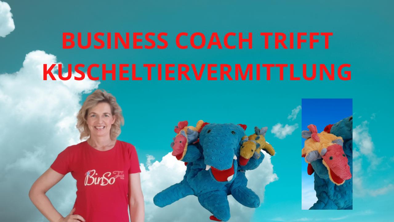 Business Coach trifft Kuscheltiervermittlung