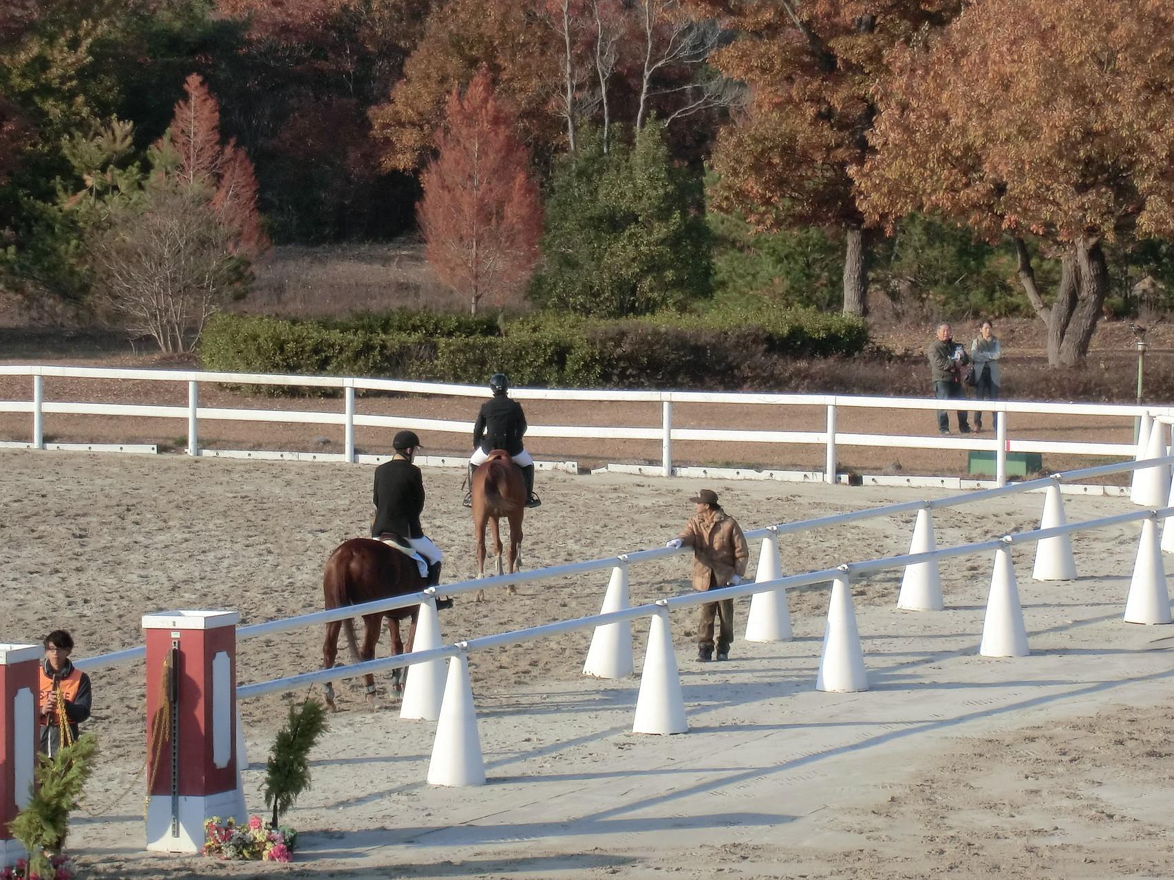 馬術競技会の様子