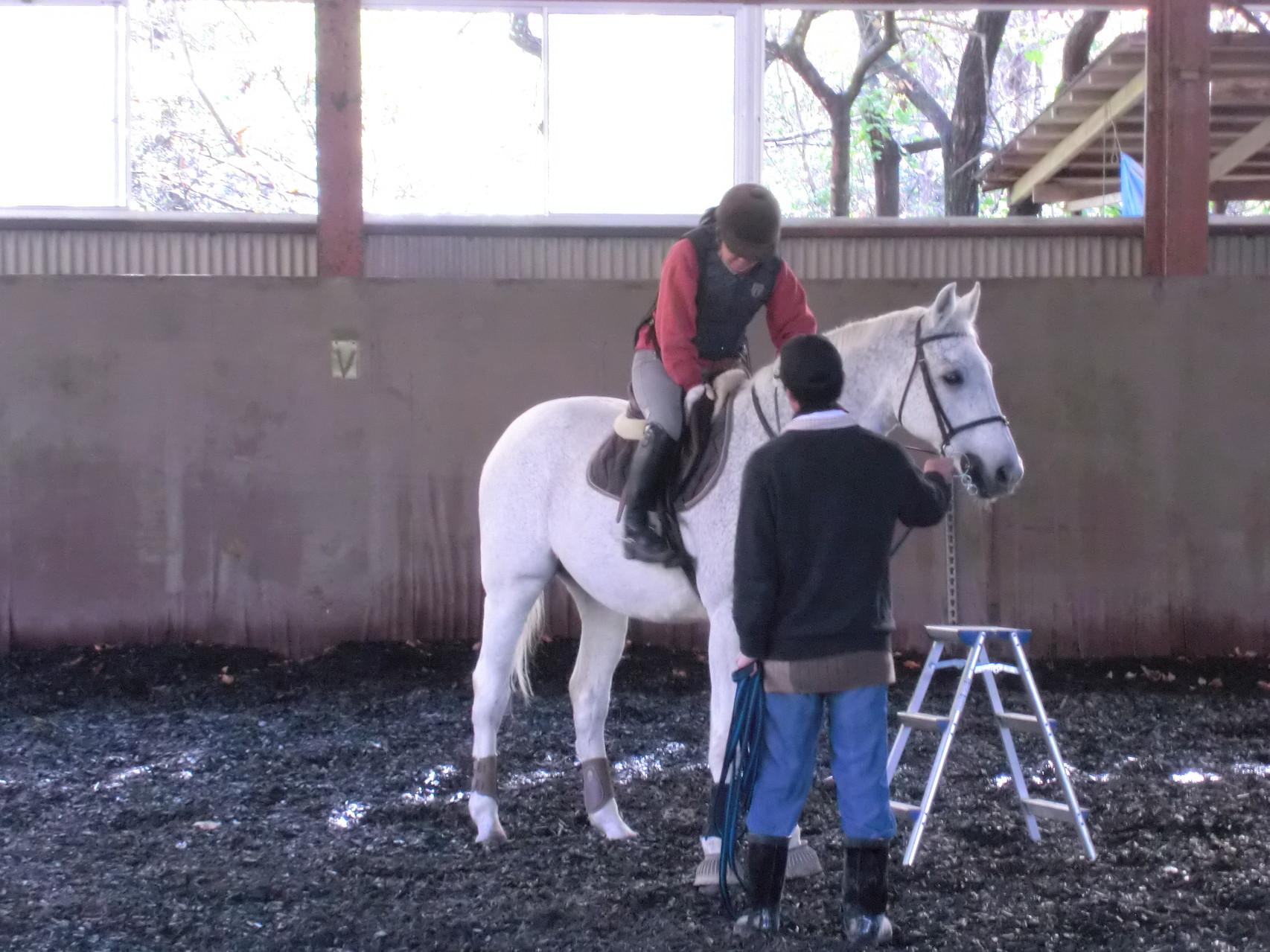 屋内で乗馬練習