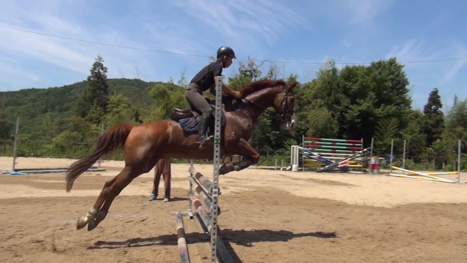 屋外で乗馬練習