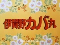 伊賀野カバ丸