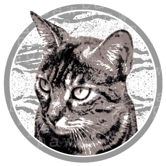cat,cats,katten,kitty,katzen,katze,kat,animals,dieren,tiere,gift,xmas,art,kunst,shirtdesign,shirt,tshirt,gift idea,rain,meow,pet