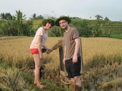 Participer au travail dans une  riziere en fonction de la saison