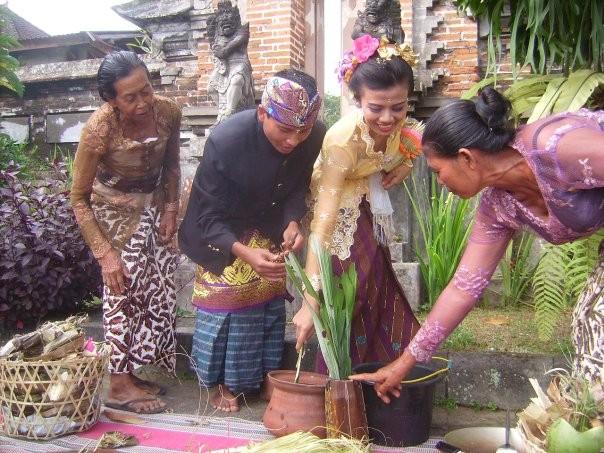Les maries doivent maitriser les savoirs balinais: la femme sait preparer du porridge et le garcon sait preparer le liqueur de laseve du palmier (le fameux arak)