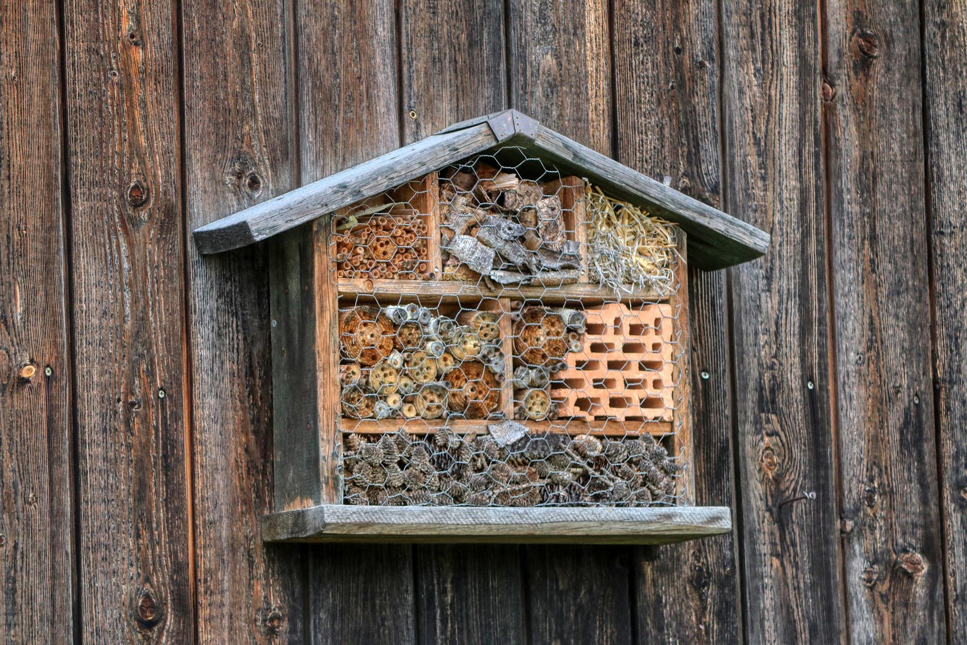Der Mythos des Wildbienenhotels