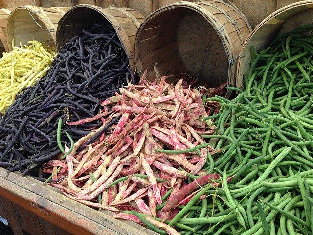 Welttag der Hülsenfrüchte - Wertvolle Nahrungsquelle für Mensch und Tier