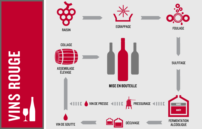 Fabrication du vin rouge