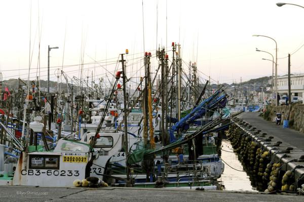 明日の漁を待つ船、これから帰る船もまだあると聞いた漁師のおじいちゃんの話が懐かしい。