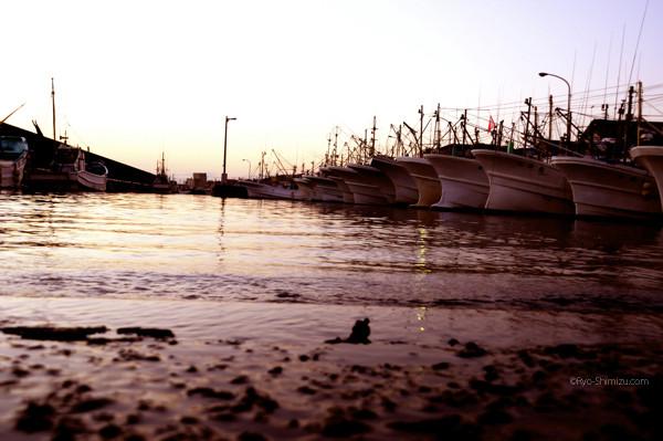 漁師が居ない港