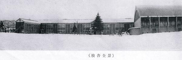 1963.02月撮影の新井中学校:この敷地は、現在の新井小学校です。ヒマラヤ杉の奥が「職員玄関」。