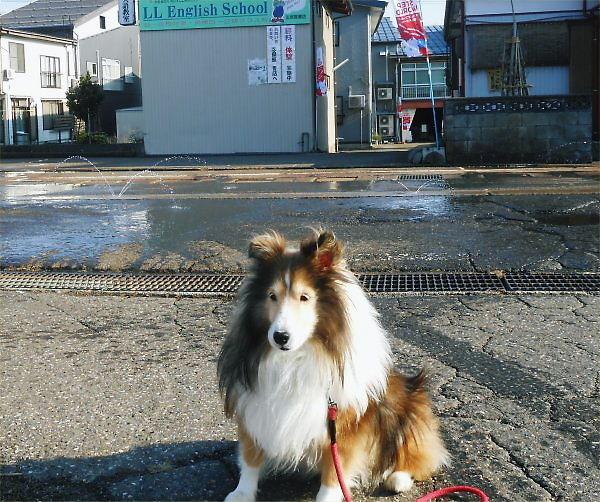 2013.12.04 消雪パイプ点検