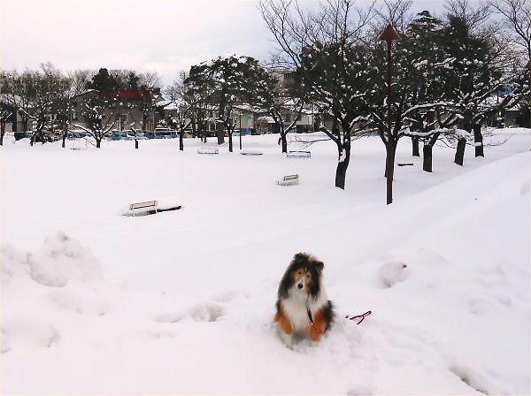 2012.12.11(火)