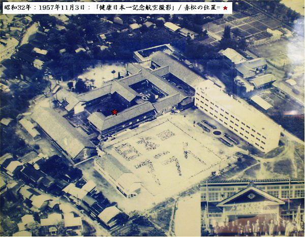 1957.11.03 ★は「中庭の赤松の位置」