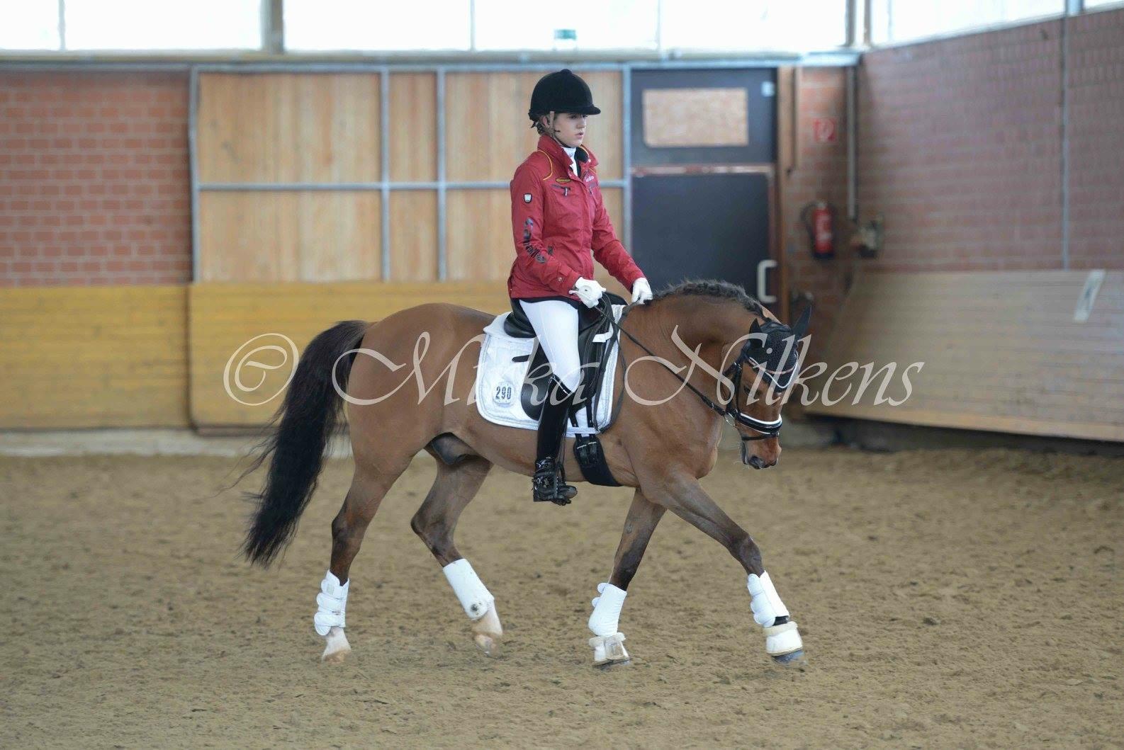 Ponyturnier Hamminkeln