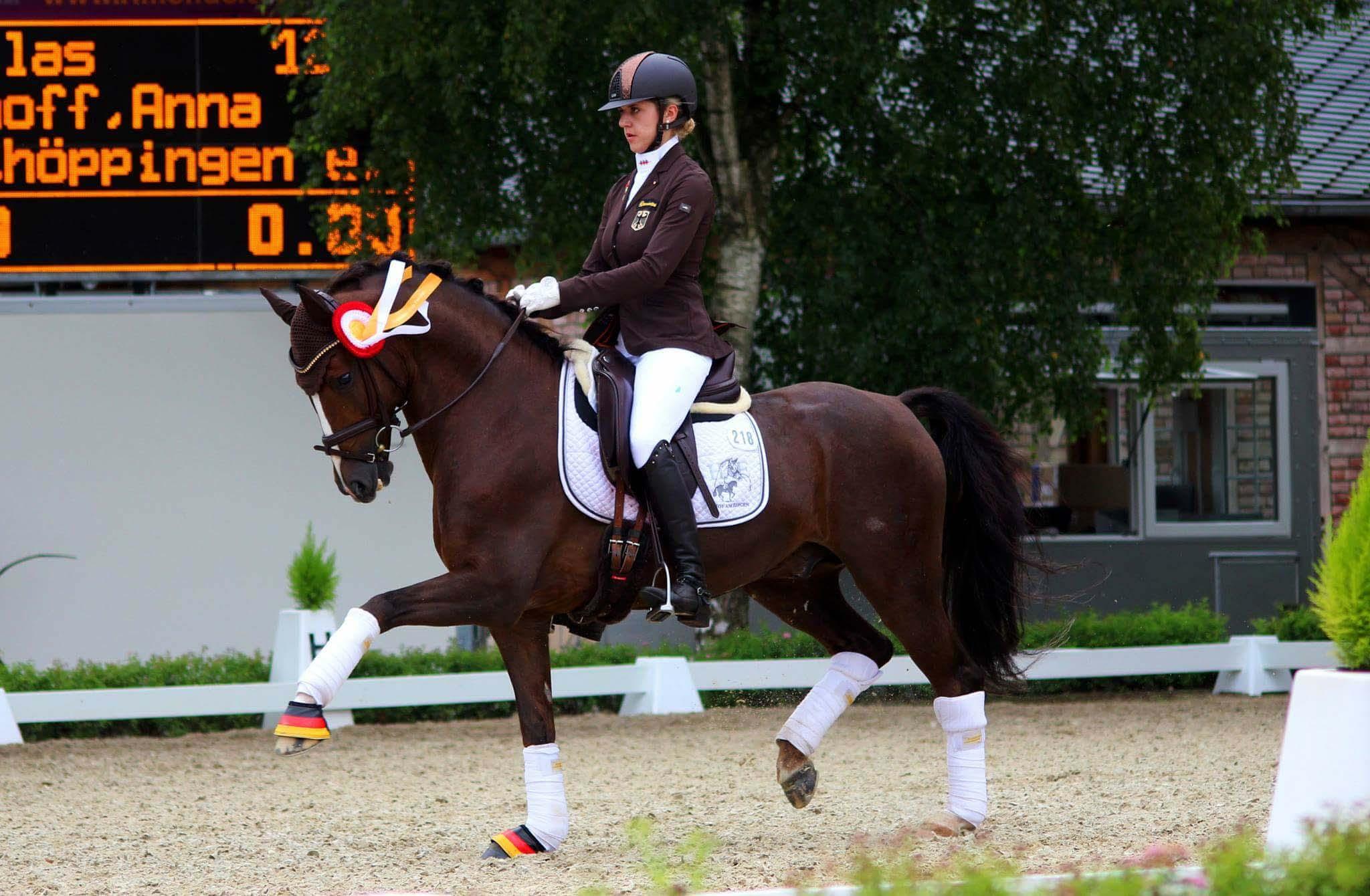Westfälische Meisterschaft Greven