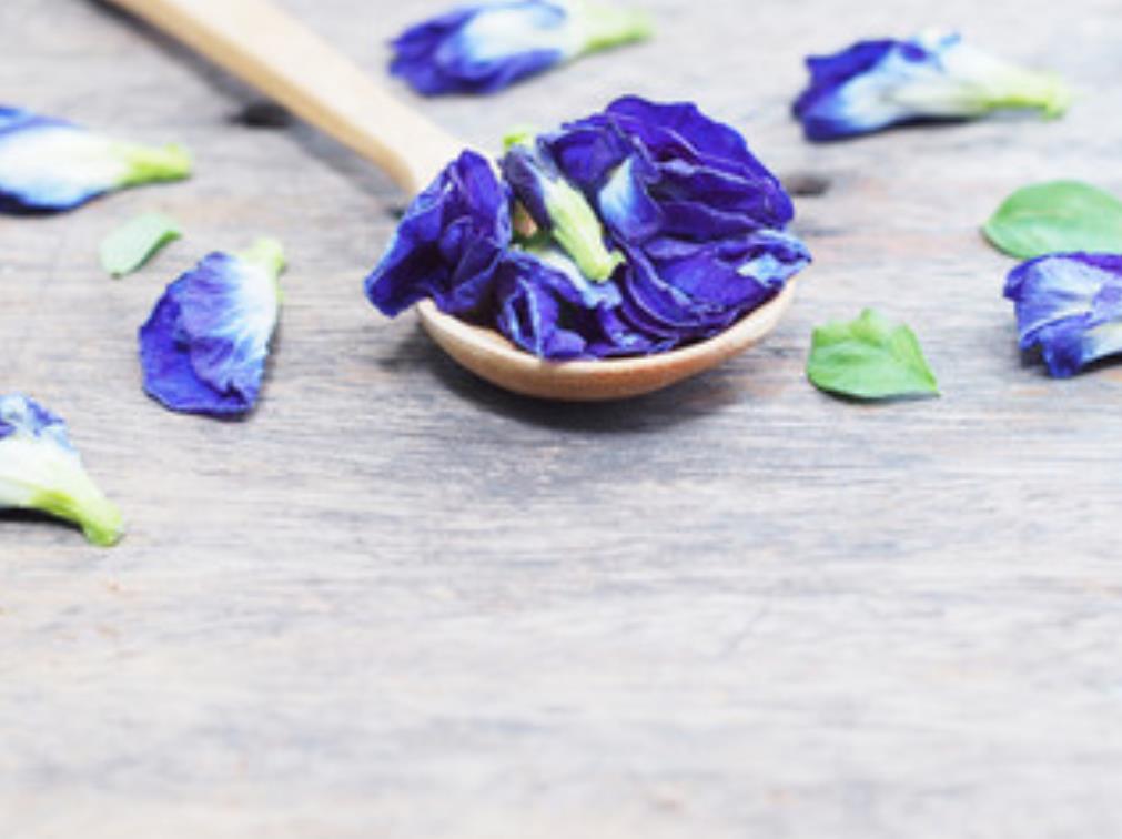 アンチャン(バタフライピー)の花