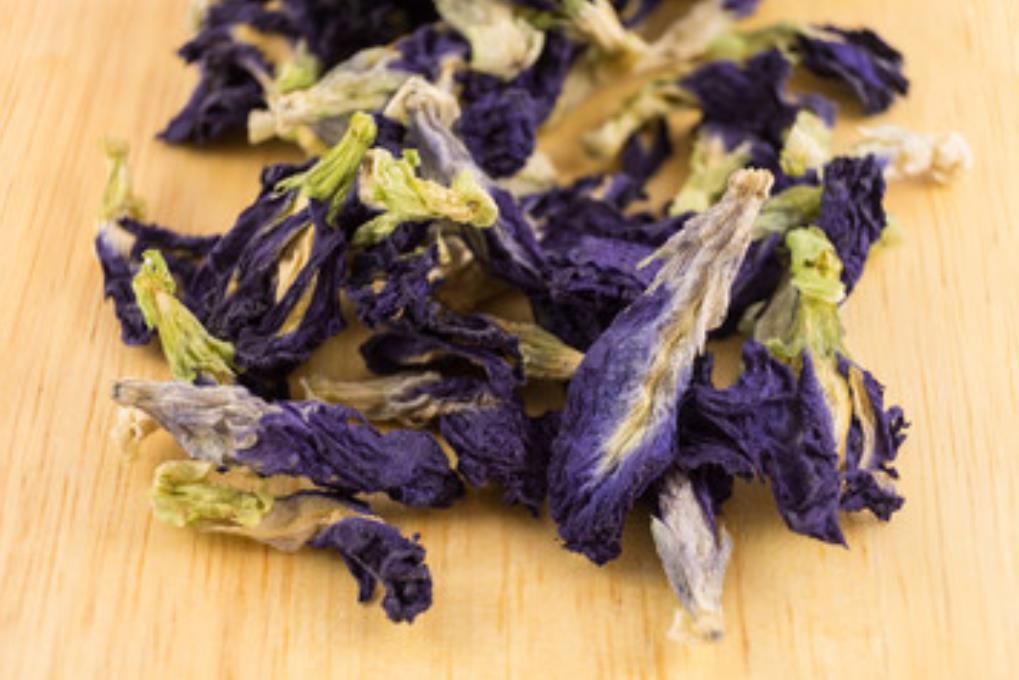 青い花のハーブ茶 アンチャン(バタフライピー)