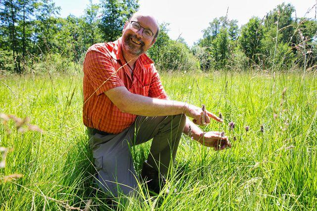 Thomas Schneider, Vorstandsmitglied der Delattina, zeigt den Heilziest auf einer extrem seltenen Pfeifengraswiese auf Kalk, die es in Sitterswald gibt.