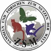 Zoologische Staatssammlung München