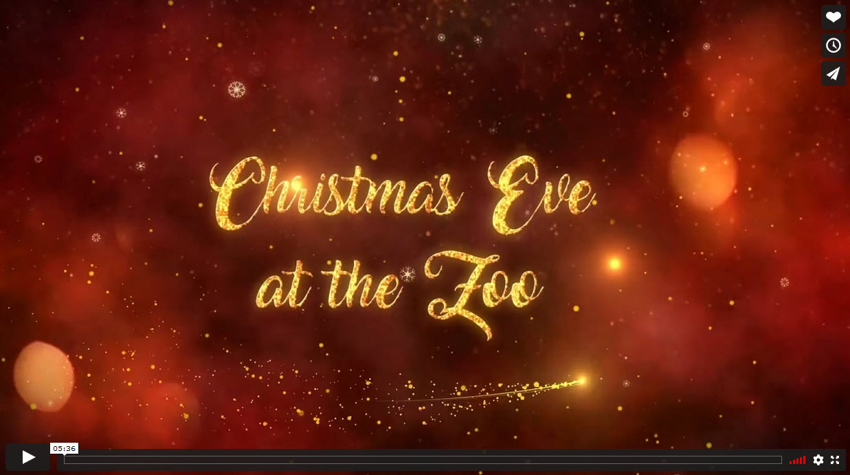 Christmas Eve at the Zoo, by Jenny Heap