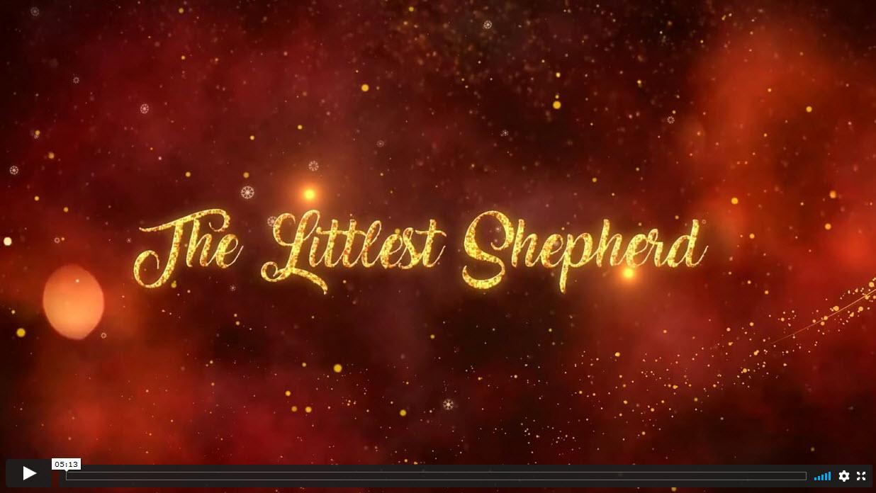The Littlest Shepherd, by Siân Rowland