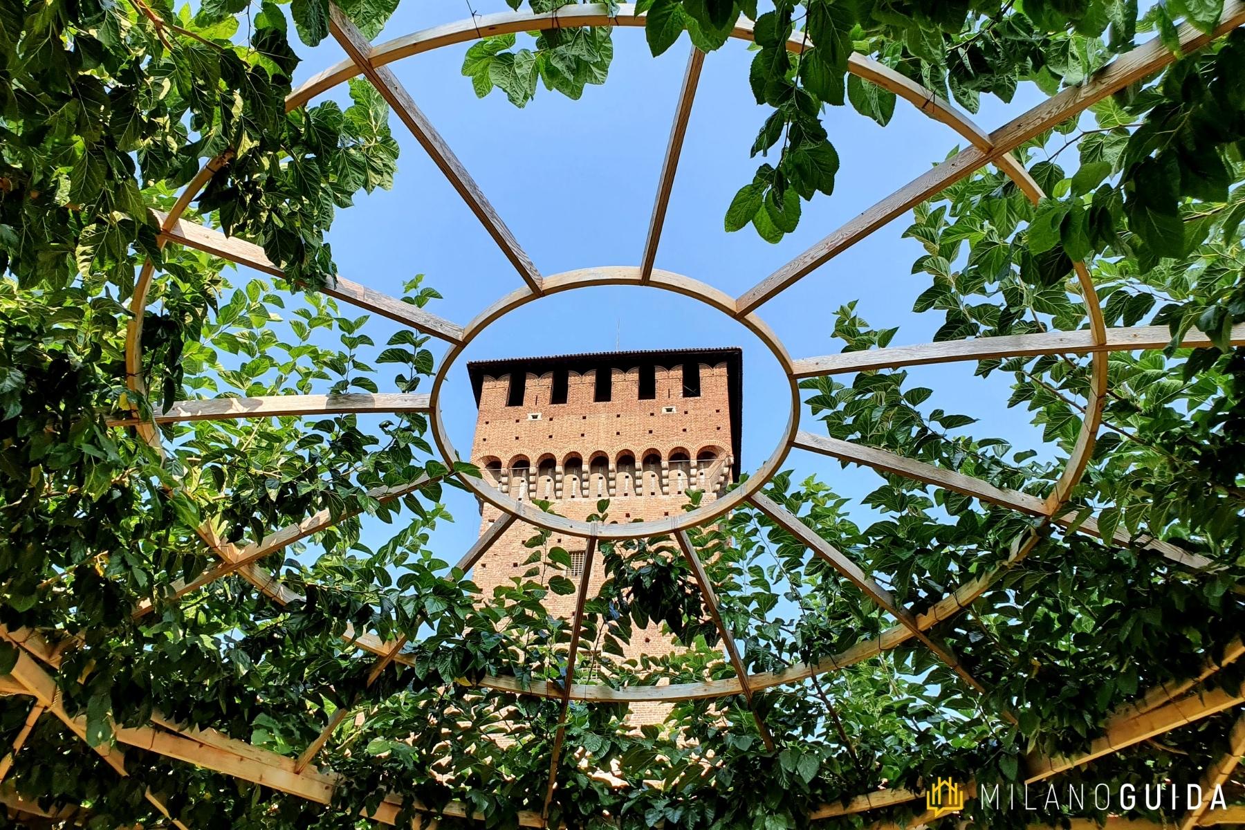 Visita guidata Castello Sforzesco per bambini
