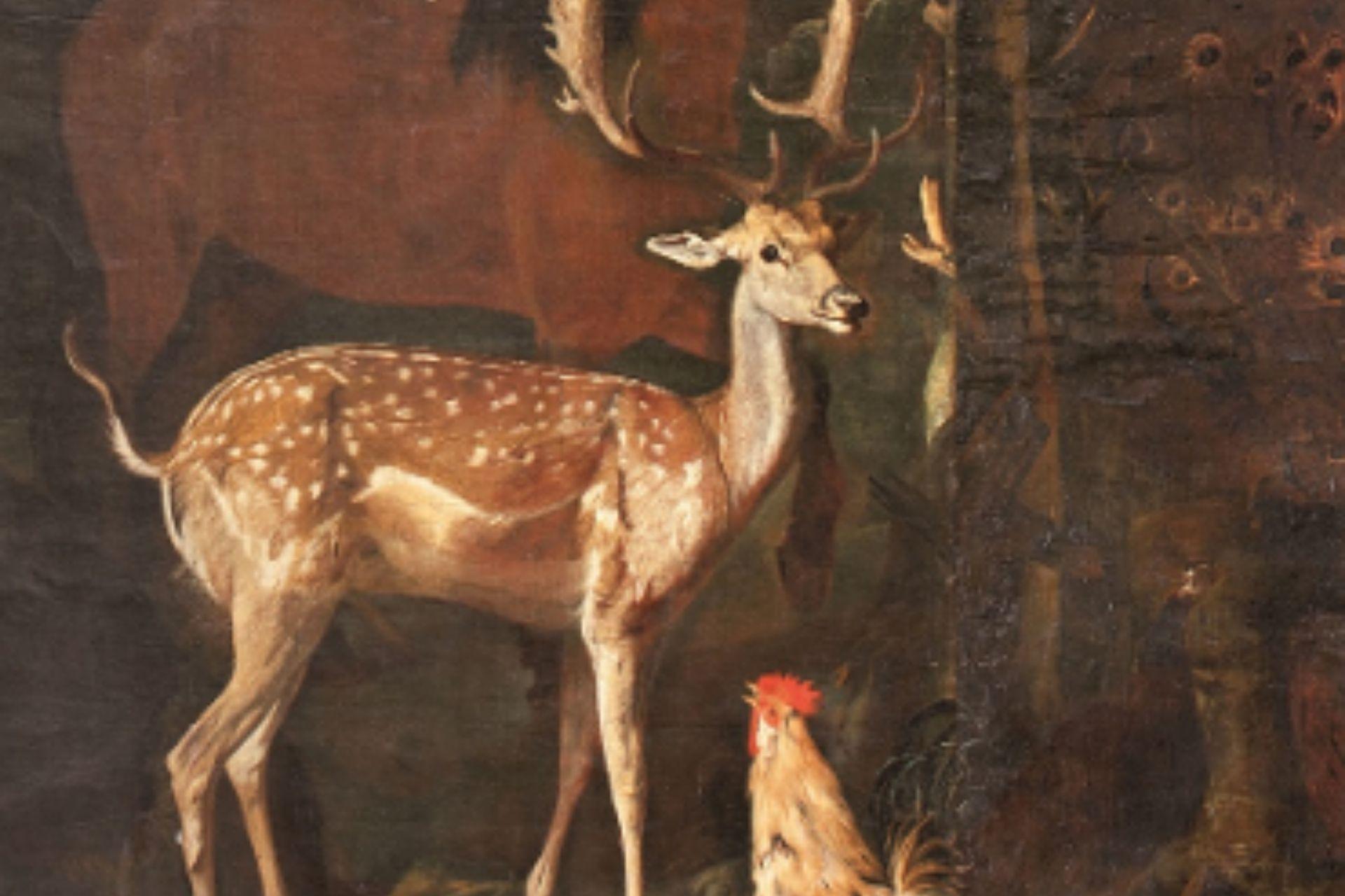 Mostra Natura Milano