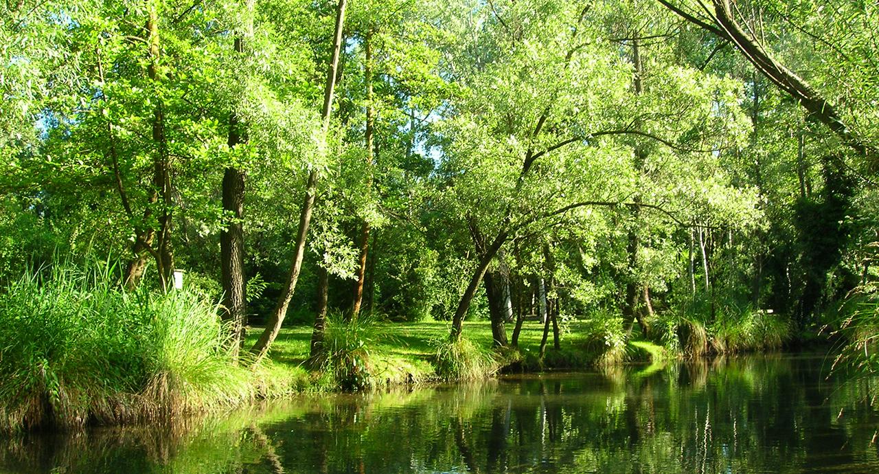 Visita guidata Parco Ittico Paradiso