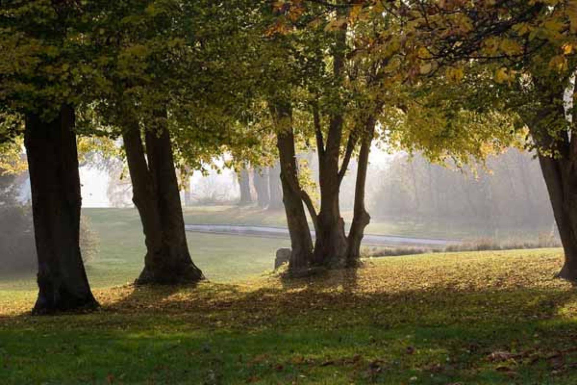 Parco di Monza per bambini
