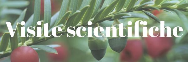 Visite guidate scientifiche