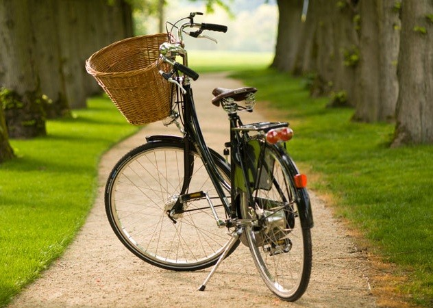 Visita guidata bicicletta Navigli