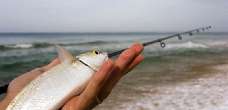 рыбалка в крыму в стерегущем